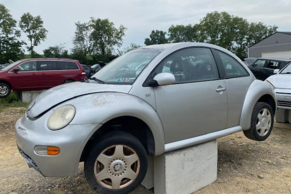 01 beetle