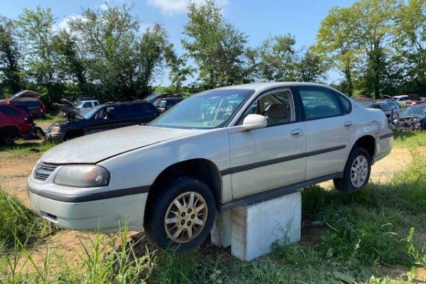 03 Impala