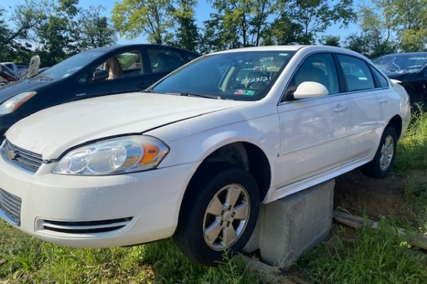 09 Impala